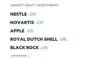 largest equity investments